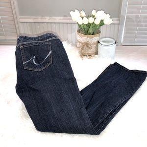 Express Stella Bootcut Jeans. Size 6R dark wash.